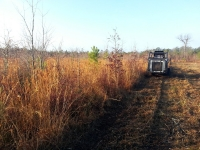 Massie Contracting Land Clearing Richmond VA